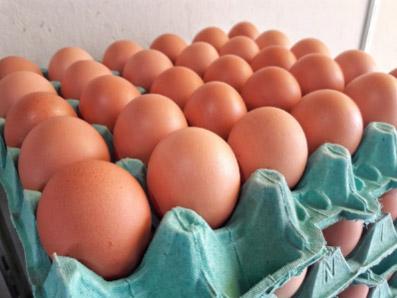 ovos-por-assinatura