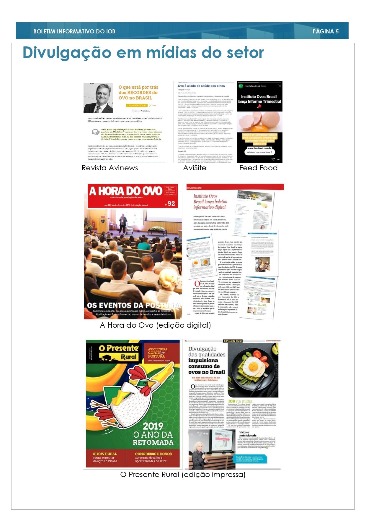 2° Edição Informe Trimestral _page-0005