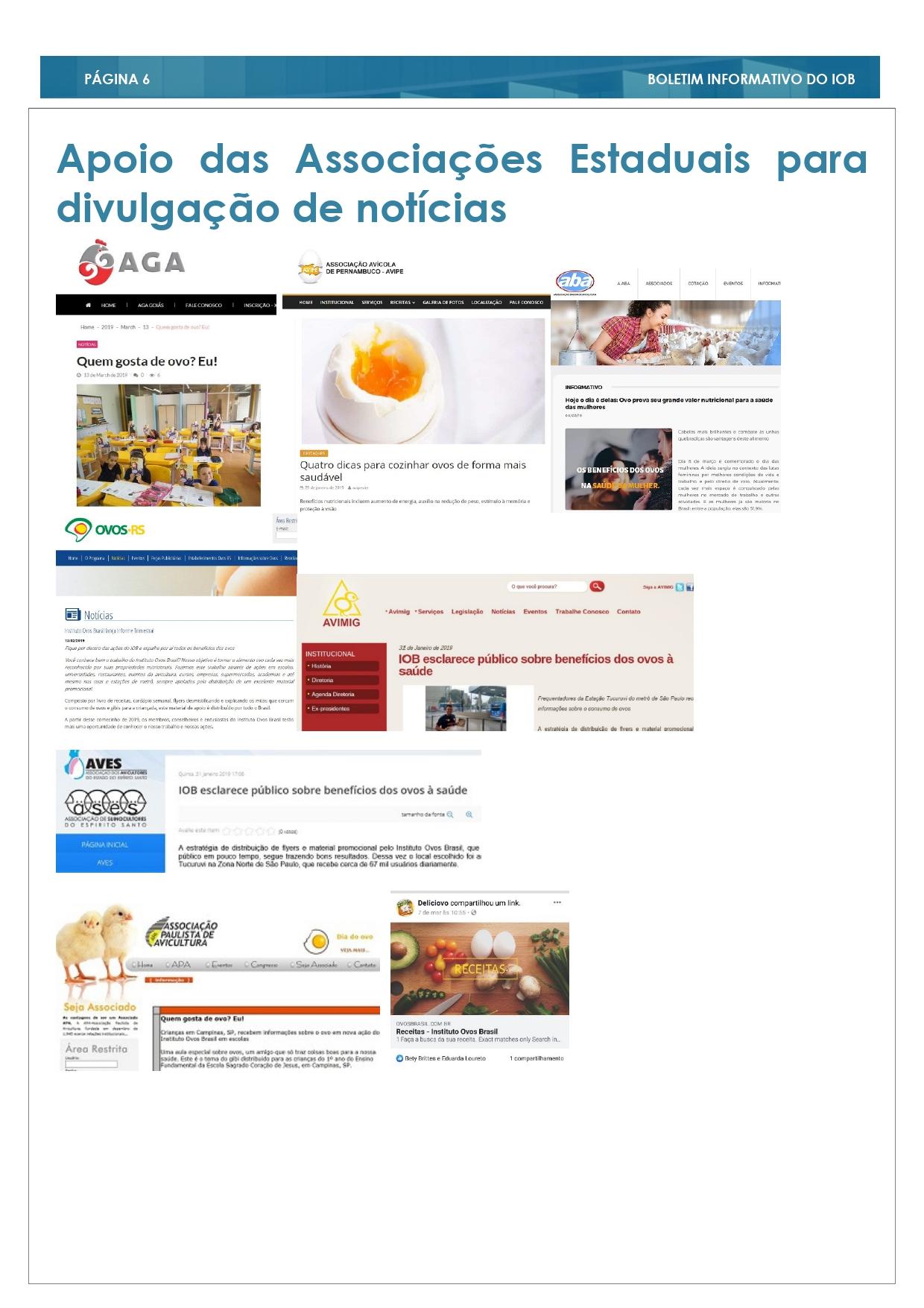 2° Edição Informe Trimestral _page-0006